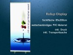 Business Rollup-Display