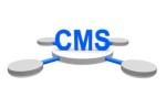 Webseite mit CMS